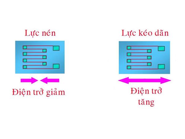 Do-cam-bien-strain-gage-voi-NI-CompactDAQ-1